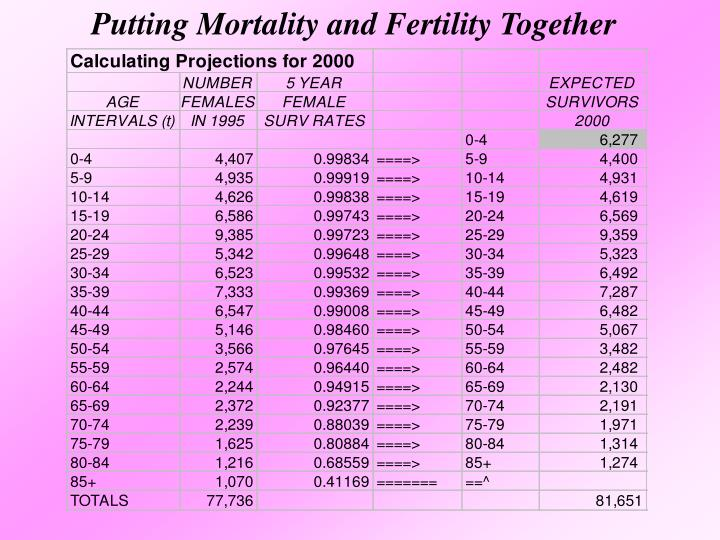 Putting Mortality and Fertility Together