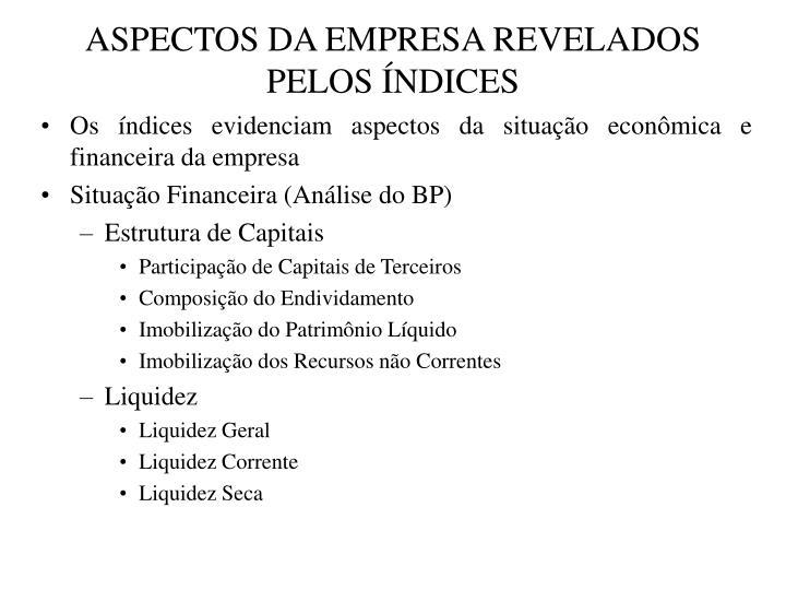 ASPECTOS DA EMPRESA REVELADOS PELOS ÍNDICES