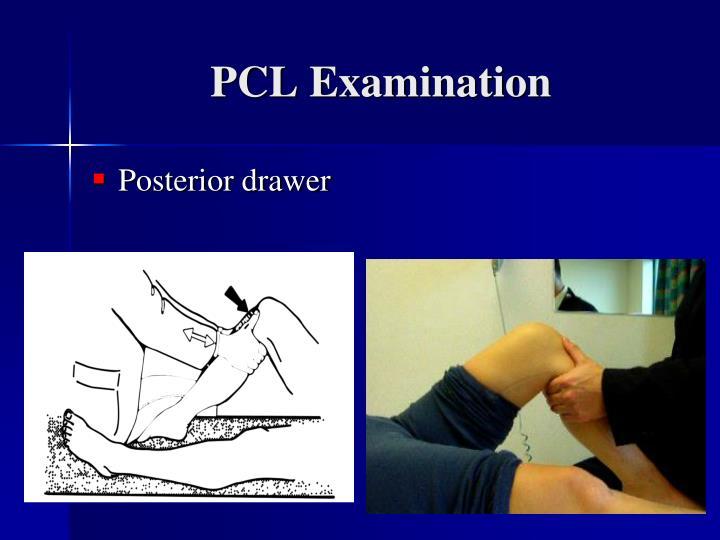 PCL Examination
