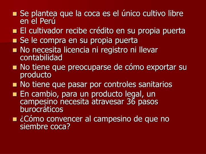Se plantea que la coca es el único cultivo libre en el Perú