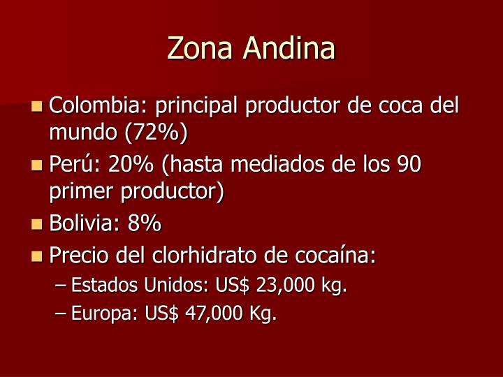 Zona Andina