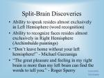 split brain discoveries