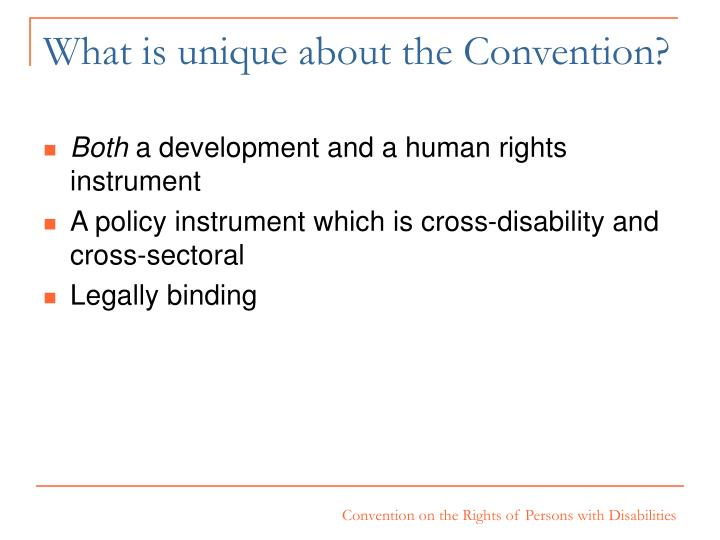 What is unique about the Convention?