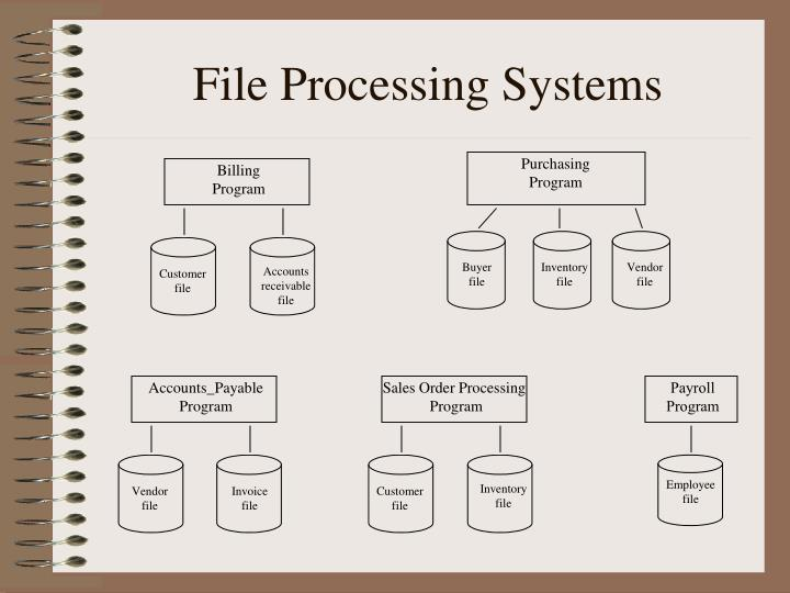 file processing systems n.