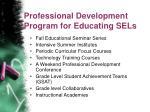 professional development program for educating sels