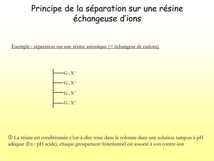 Principe de la s paration sur une r sine changeuse d ions2
