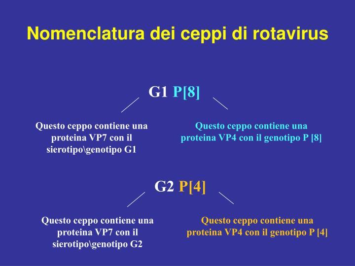 Nomenclatura dei ceppi di rotavirus