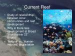 current reef