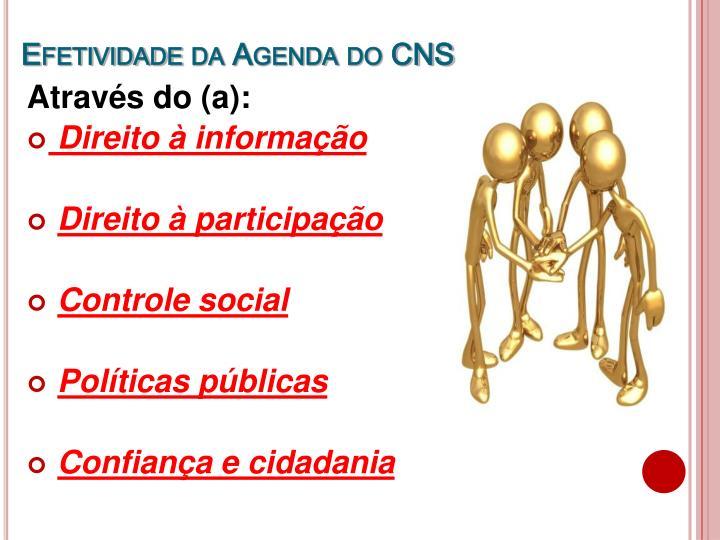 Efetividade da Agenda do CNS