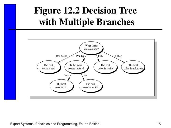 Figure 12.2 Decision Tree