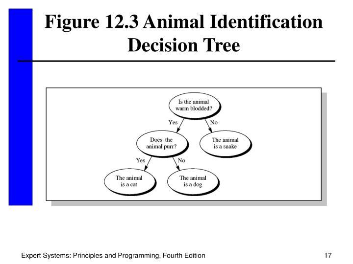 Figure 12.3 Animal Identification