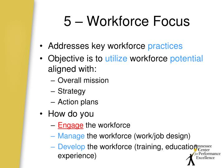 5 – Workforce Focus