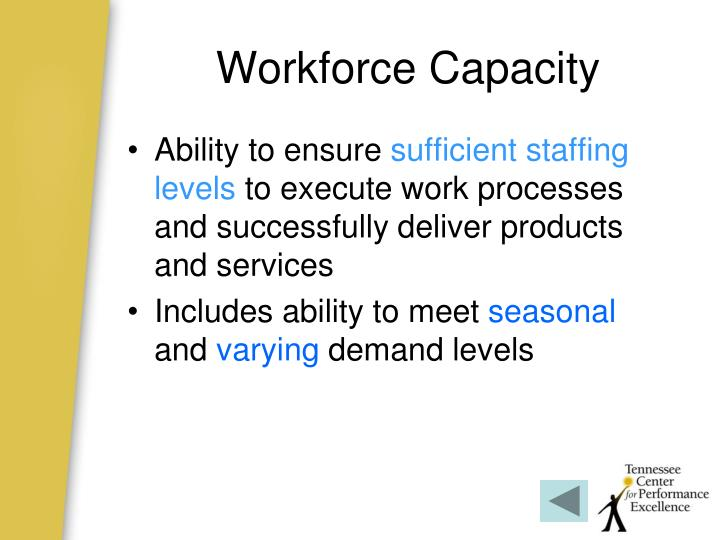 Workforce Capacity