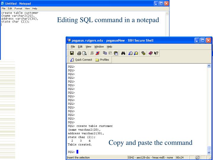 Editing SQL command in a notepad