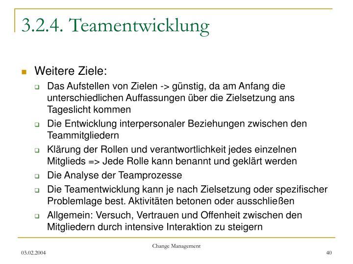 3.2.4. Teamentwicklung