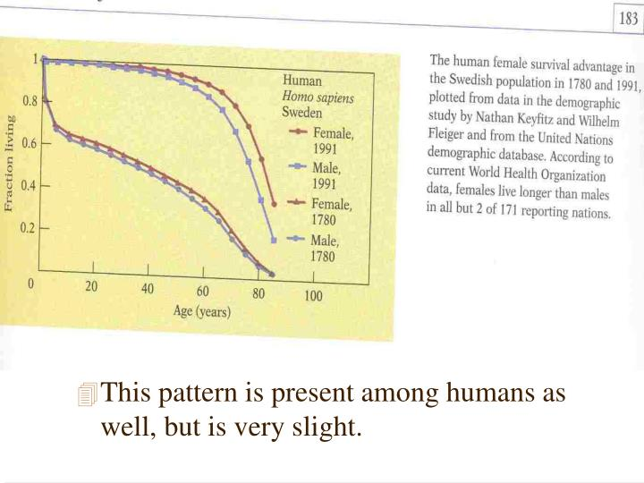 This pattern is present among humans as well, but is very slight.