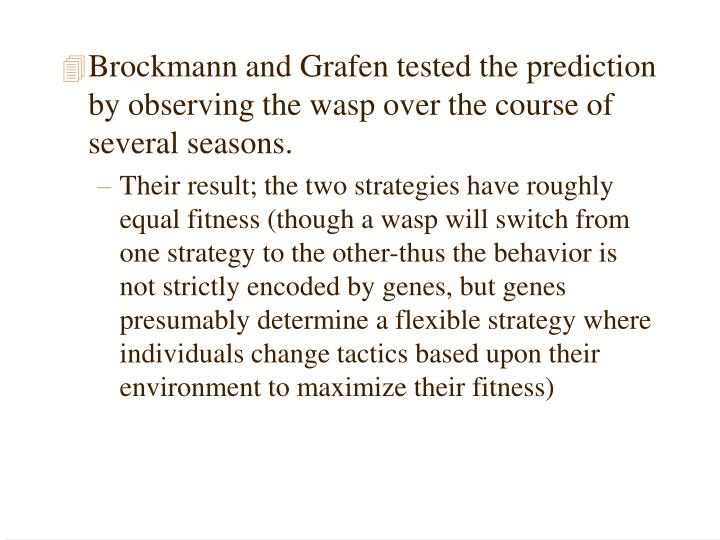 Brockmann and Grafen tested the prediction by observing the wasp over the course of several seasons.