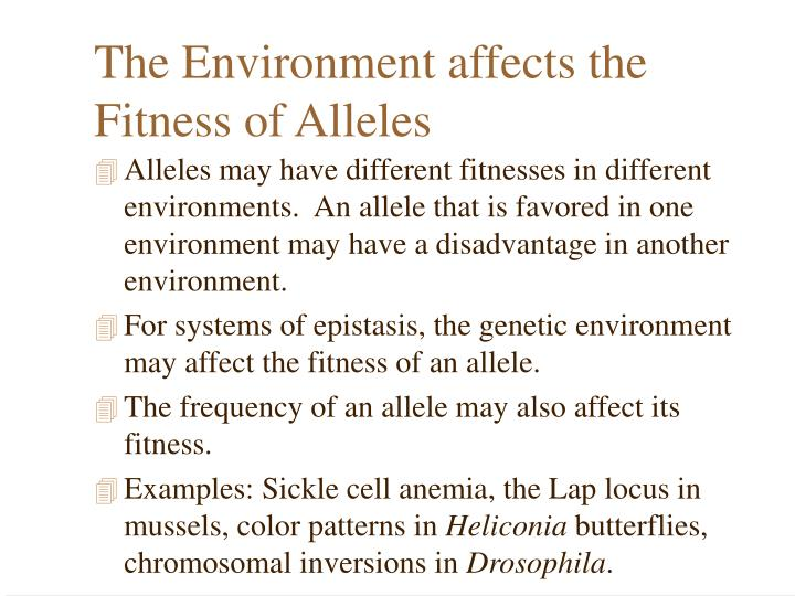 The Environment affects the Fitness of Alleles