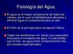 fisiolog a del agua