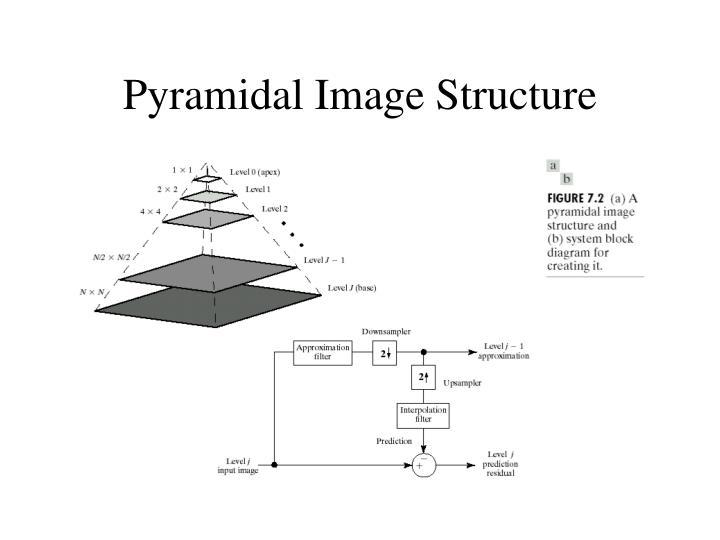 Pyramidal Image Structure
