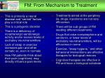 fm from mechanism to treatment