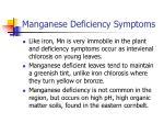manganese deficiency symptoms