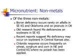 micronutrient non metals