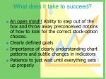 what does it take to succeed