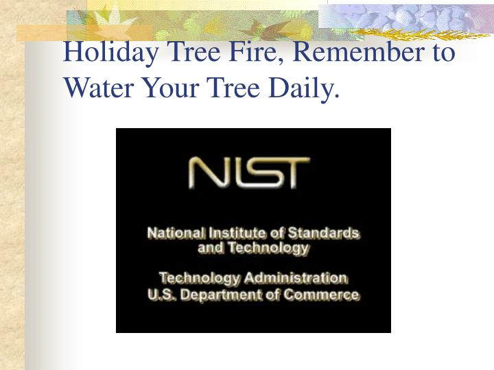 Holiday Tree Fire, Remember to Water Your Tree Daily.