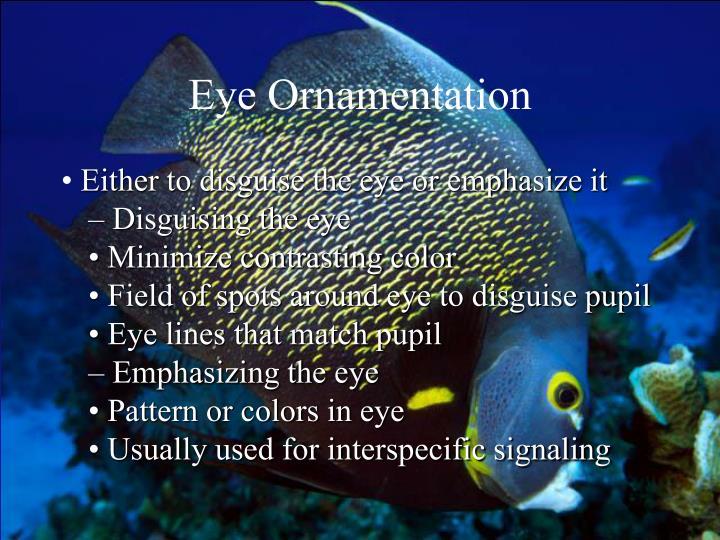 Eye Ornamentation