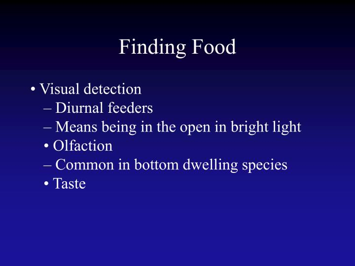 Finding Food