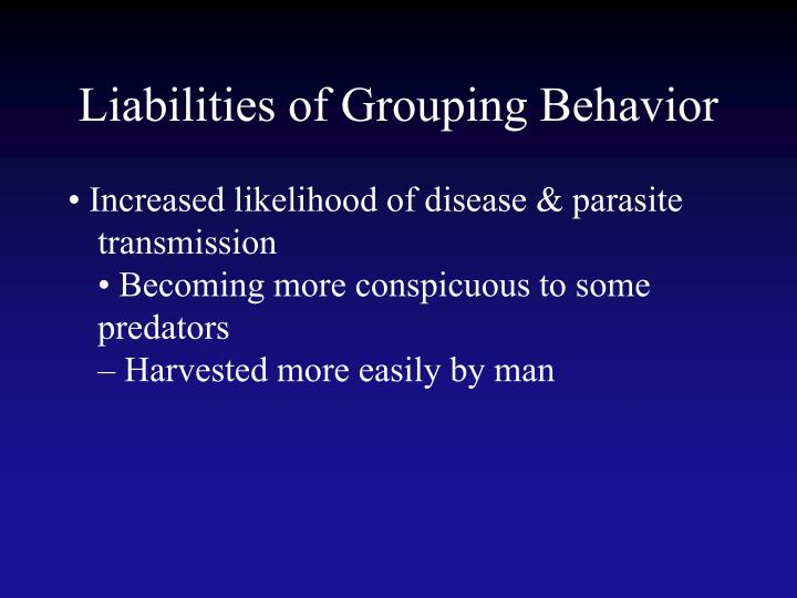 Liabilities of Grouping Behavior