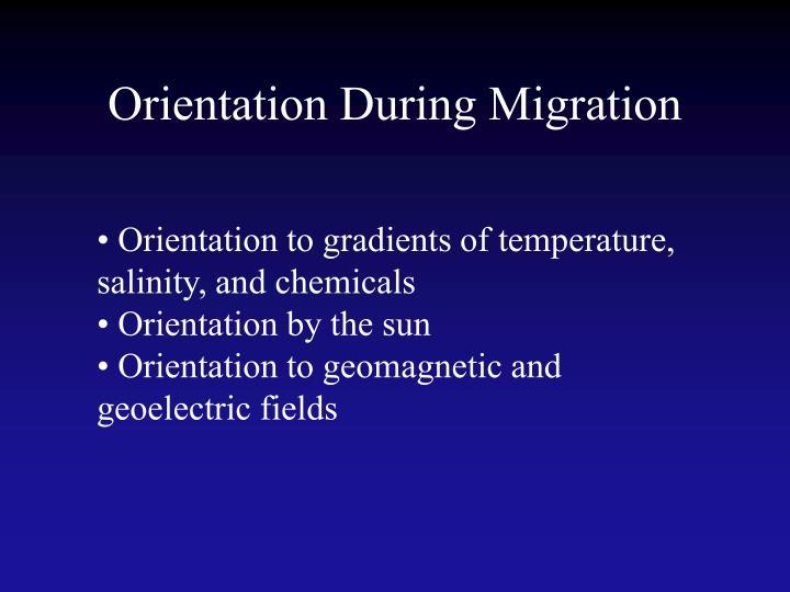 Orientation During Migration