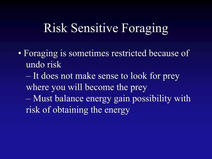 Risk Sensitive Foraging