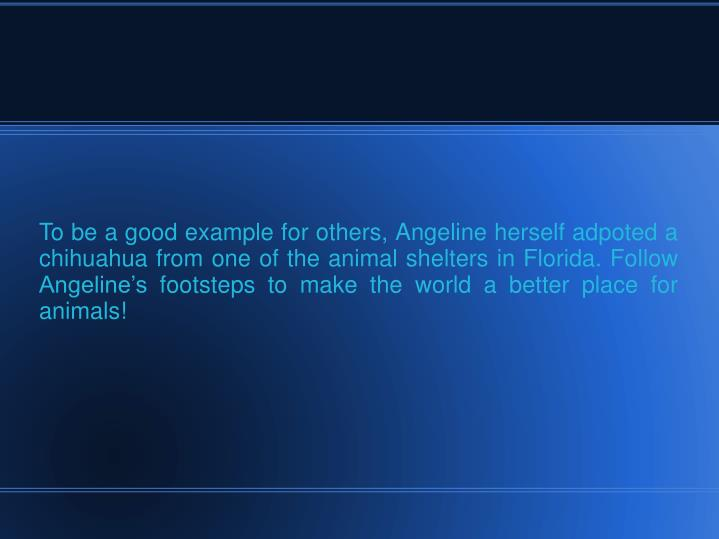 To be a good example for others, Angeline herself adpoted a chihuahua from one of the animal shelters in Florida. Follow Angeline's footsteps to make the world a better place for animals!