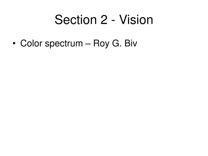 Section 2 - Vision