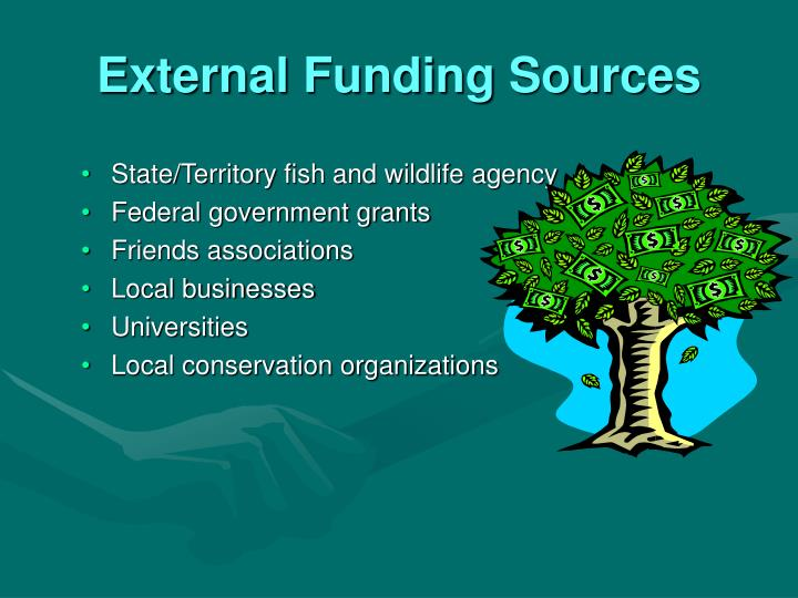 External Funding Sources