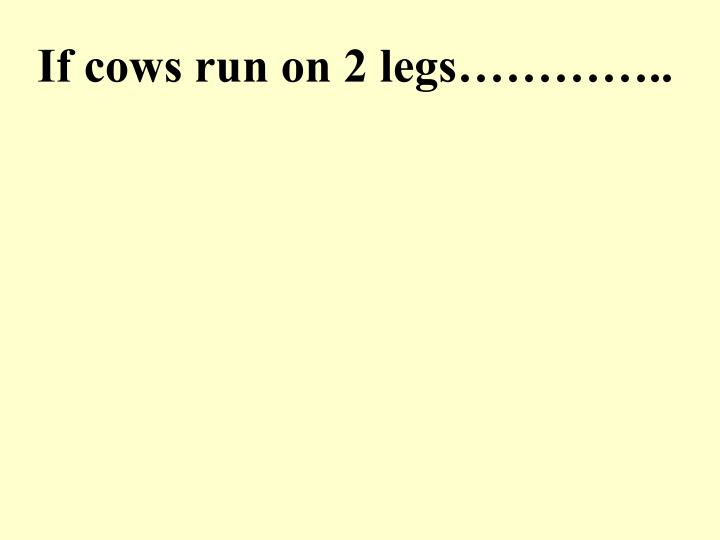 If cows run on 2 legs…………..