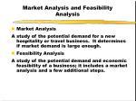 market analysis and feasibility analysis