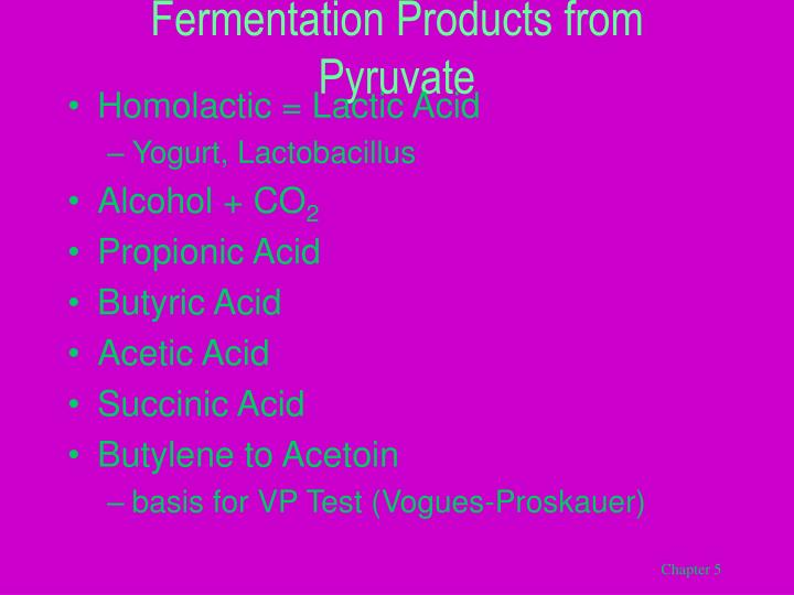 Fermentation Products from Pyruvate