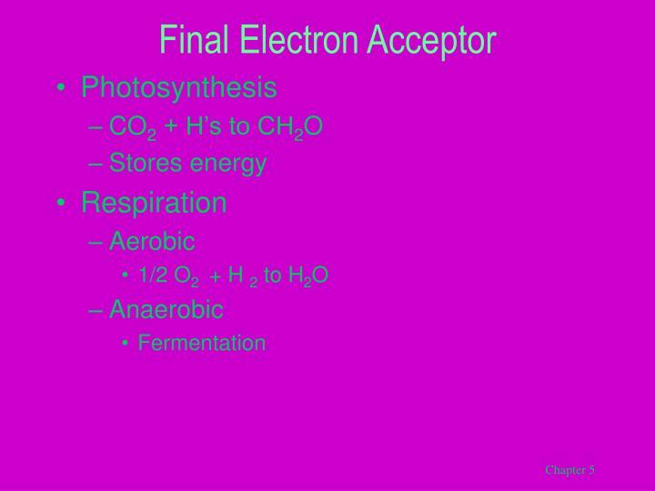 Final Electron Acceptor