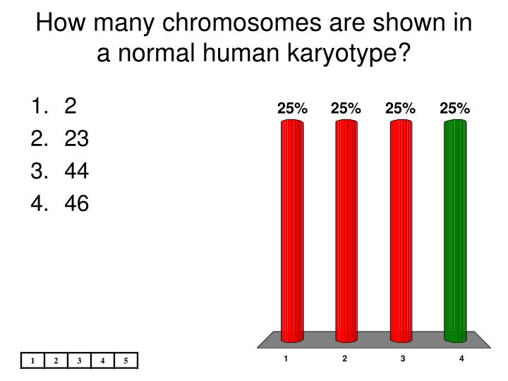 how many chromosomes are shown in a normal human karyotype n.