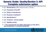 generic guide quality section 2 api complete submission option