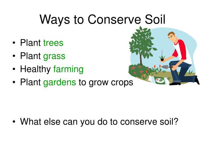 Ways to Conserve Soil