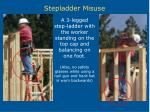 stepladder misuse