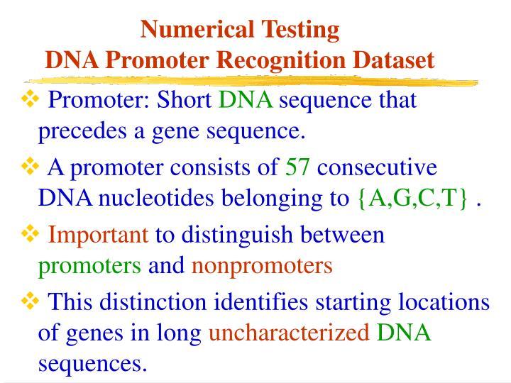 Numerical Testing