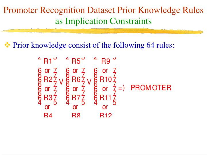 Promoter Recognition Dataset Prior Knowledge Rules
