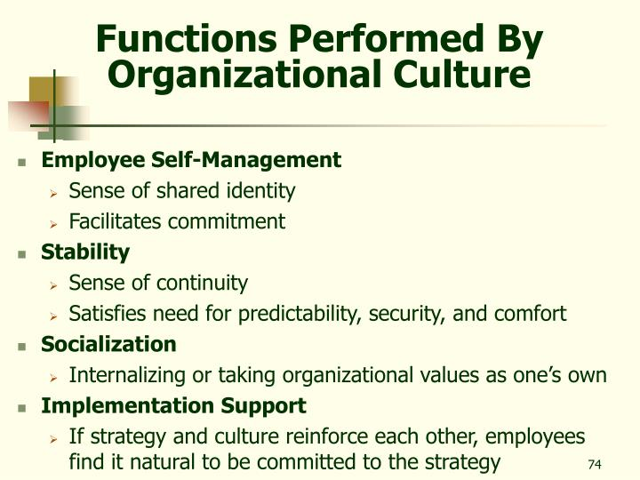 Functions Performed By Organizational Culture