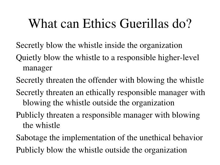 What can Ethics Guerillas do?