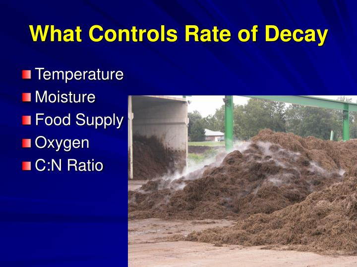 What Controls Rate of Decay